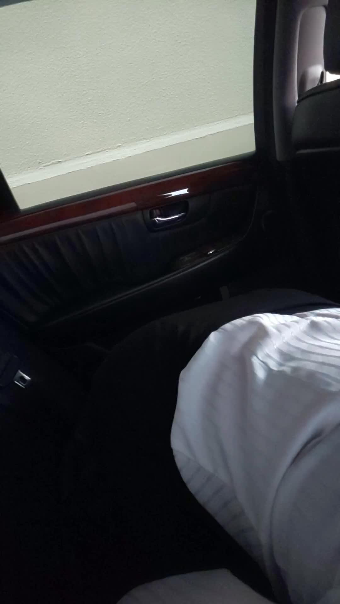 フェラ 動画 車内